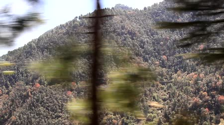 shiva : The view from a passing train in the forest belt of the Sivalik range, Sub-Himalayas, India Stock Footage