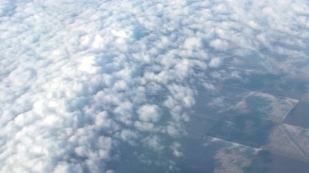 meteorologia : Clouds as sheeps (fleece clouds) under the wing of the aircraft