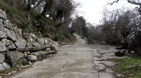 constitutional : Walk along the abandoned road among the hills. Video camera moves to the rhythm of steps, pacing