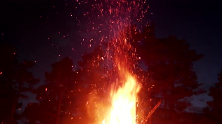 babona : tipi fire. Element of fire, huge night fire on holiday. Dance sparks, Pyromania, Zoroastrianism