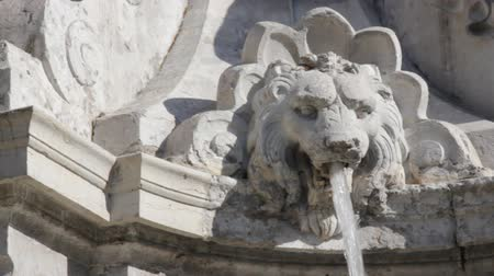 заслуга : Fountain-lion. A jet of water gushes from the mouth of a sculpted lion fountain