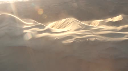 grit : Great Indian desert (Thar) at sunset. Wind rips sand from crest of barkhan, sand drifting, samum. Dune moves slowly by desert. Problem of fixing sands for villages and agriculture. Video in back light