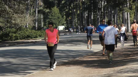 garden route : France, Paris - 24 September 2017: Paris Park Bois de Boulogne with active sport tourists on a Sunday morning Stock Footage