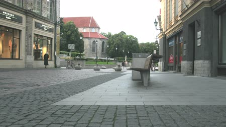 Tallinn, Estonia - September 1, 2017: Commercial pedestrian streets in the city center, bench, urn, pavement. Massive granite pigeons are an obstacle to traffic