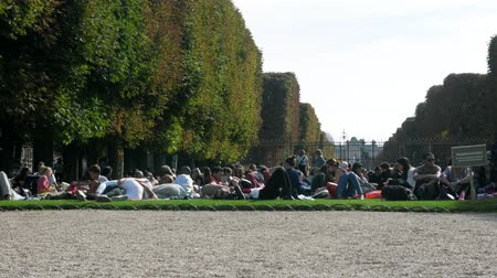 parisli : Paris, France - 24.09.2017: huge number of Parisians resting on lawn on summer day. Overpopulation of megacities and craving for nature, average man Stok Video