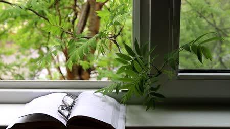 příznivý : Attributes of snug home (family hearth). Open book on the windowsill, glasses, mountain ash branch in the open window, spring small rain, view of the quiet street of the city. Sweet anticipation