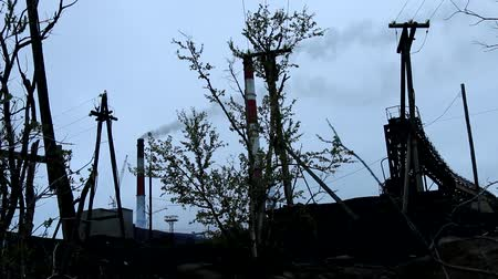 fatality : Death of the Earth. The silhouette of half-dead tree, smoked huge pipes, wires stretch, polluting plant