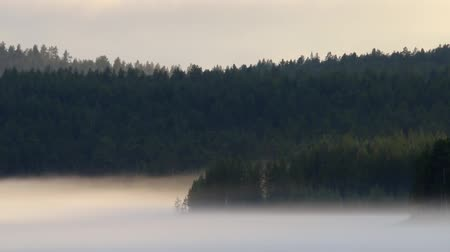 rozpouštění : Misty calm evening on the forest lake. Fog rises from cold water, steam fog. Spring in the Arctic North. Scandinavia, Lapland