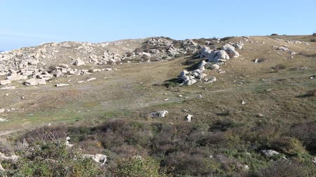 koyun : The hillside in the steppes of the Northern Black sea. The condition of the herbage indicates overgrazing by sheep and cattle. The stone borders of the ancient sheep pen (corral) are noticeable Stok Video