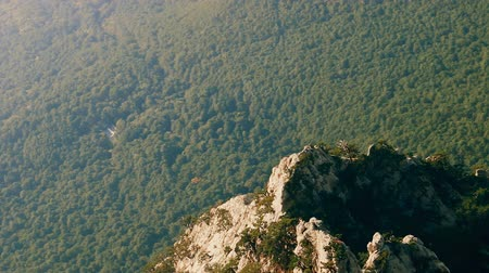 temperada : Forests in the dry subtropics in the Northern mountainous shore of the Black sea and seaside villages. Top view Stock Footage