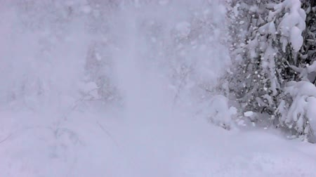 gazdasági pangás : Snow explosion on background of calm frozen forest landscape. Super slow motion 1000 fps