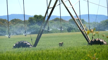 irrigação : Industrial irrigation of crops