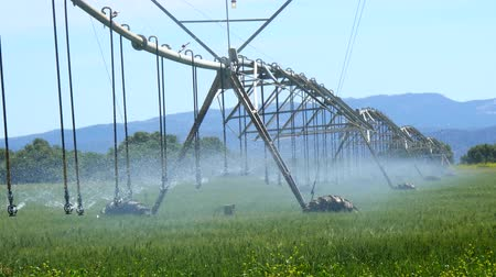 irrigate : Industrial irrigation of crops