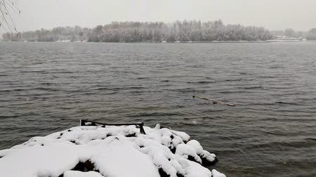 pontão : View of the Dnieper river during a cold and snowy winter day. The sky is covered by clouds and snow flakes fall softly on the trees and on the ground Vídeos