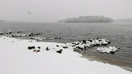 frozen lake : View of the Dnieper river during a cold and snowy winter day. The sky is covered by clouds and snow flakes fall softly on the trees and on the ground Stock Footage