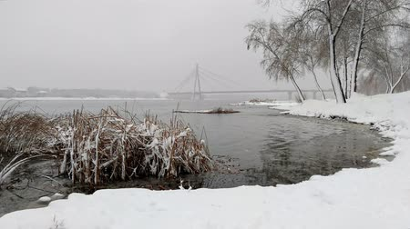 catástrofe : View of the Dnieper river during a cold and snowy winter day. The sky is covered by clouds and snow flakes fall softly on the trees and on the ground Stock Footage