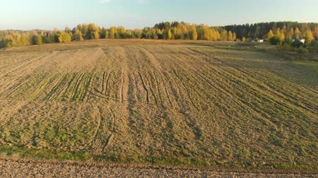 casas : Aerial view of the plowed field during sunset