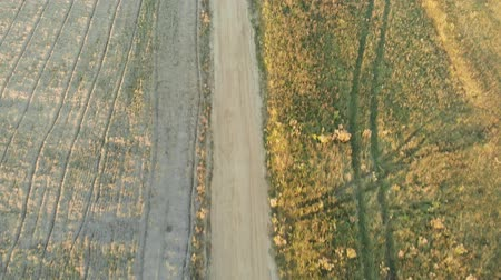 Aerial top-down view of the plowed field during sunset Stock mozgókép