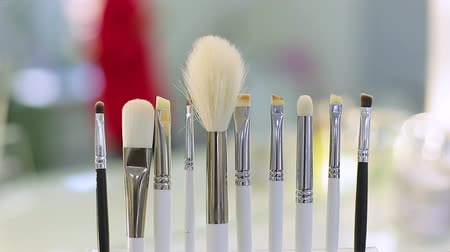 brush set for make-up