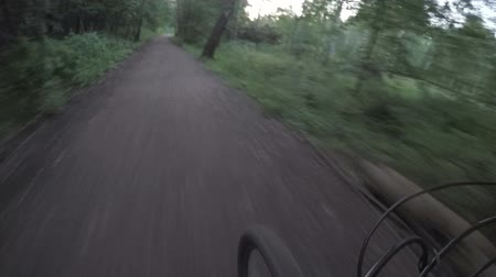 diminishing : Mountain bike rides on a dirt road in the forest. View of the front wheel