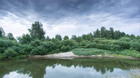 riverbank : clouds over the forest river