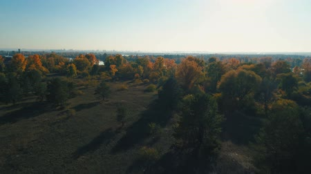enviroment : Aerial drone footage. Flight over autumn forest to river at sunset Stock Footage