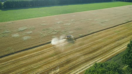 otruby : Aerial drone footage. Fly around Combine Harvester gathers the wheat. Harvesting grain field. Beautiful natural aerial landscape. Food industry concept.