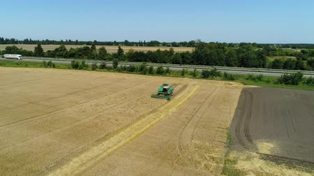 kepek : Aerial drone footage. Flight over a wheat field with harvestaer along the highway