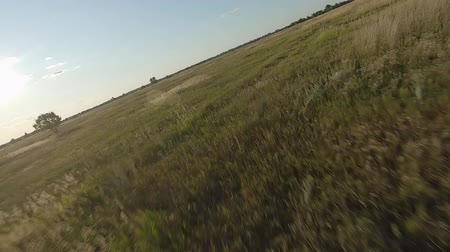 magas szög : FPV Drone racing view. Dynamic flight over dirt road and fields