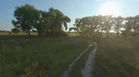 magas szög : FPV Drone racing view. Flight dynamic over dirt road and through the trees