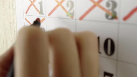 planificador : Female hand crosses with red marker the calendar day 9. Slow motion shot. Close up Archivo de Video