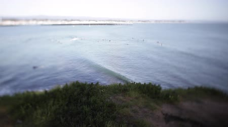a bunch of surfers hanging out in the ocean waiting for some waves