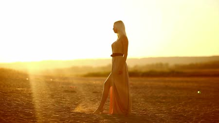 brown dress : sexy young  seductive portrait girl woman dress develops on sunset yellow desert sand walking slowly