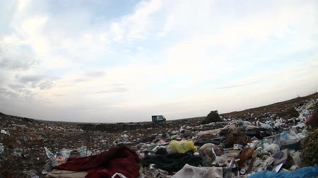 csavargó : man unemployed homeless dump dirty looking food waste in landfill  social  video