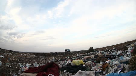 csavargó : man unemployed homeless dirty dump looking food waste in landfill  social  video