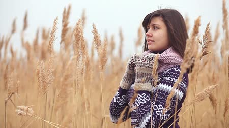 cold : girl woman portrait in sweater scarf and mittens nature autumn dry stalks cold grass Stock Footage