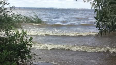 wave storm slow motion video on the river. big waves on the water river reeds nature landscape Vídeos