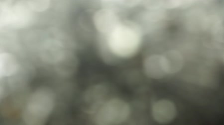 Blurred lights of Grey bokeh abstract color background