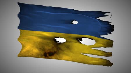 valiant : Ukraine, UA, bullet perforated, burned, grunge standard flag waving on a wind with alpha loop seamless