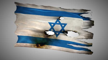 valiant : Israel, IL, bullet perforated, burned, grunge standard flag waving on a wind with alpha loop seamless