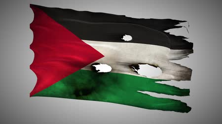valiant : Palestine,PS, bullet perforated, burned, grunge standard flag waving on a wind with alpha loop seamless