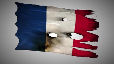 valiant : France perforated, burned, grunge waving flag loop alpha Stock Footage