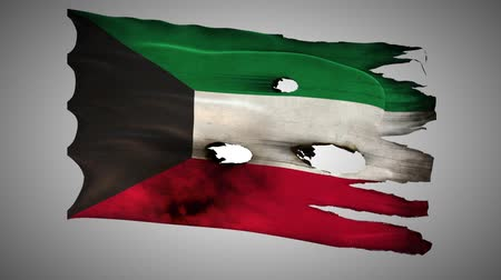 valiant : Kuwaiti perforated, burned, grunge waving flag loop alpha Stock Footage