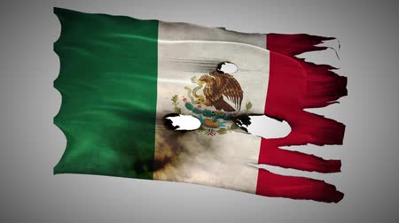 valiant : Mexican perforated, burned, grunge waving flag loop alpha Stock Footage