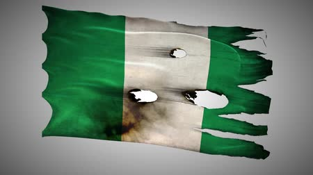 valiant : Nigerian perforated, burned, grunge waving flag loop alpha Stock Footage
