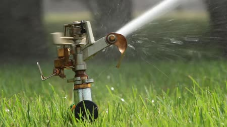 окропляет : automatic sprinkler system watering the lawn on a background of green grass