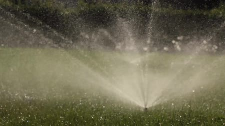 çimenli : automatic sprinkler system watering the lawn on a background of green grass
