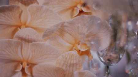phalaenopsis : Super close up parralax shot of peach orchids on crystal candelabra centerpieces.