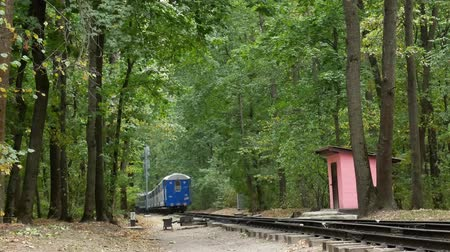 atravessar : The Blue Train Leave on Rails in Deciduous Forest in Autumn Stock Footage