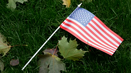 могильная плита : American USA Flag on Green Grass. Autumn, Fallen Leaves. Concept of Memorial Day or Veterans Day 11th November in America